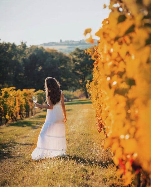 Vigneronne dans les vignes