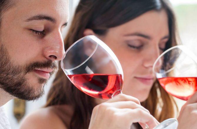 Le Vin pour lutter contre Alzheimer et Parkinson